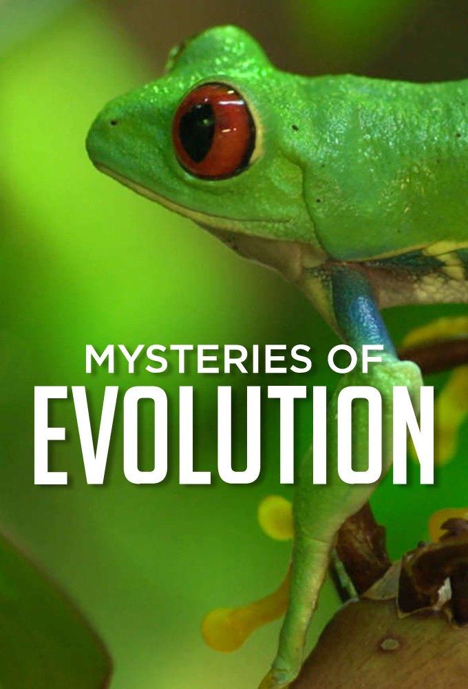 Таємниці еволюції