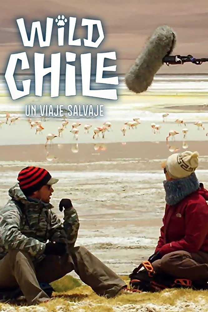 Дика природа Чилі