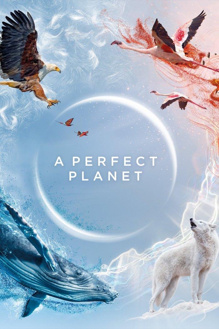 Ідеальна планета / Досконала планета